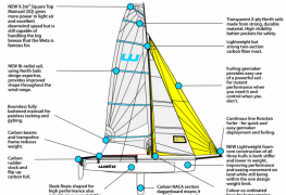 Weta Trimaran features