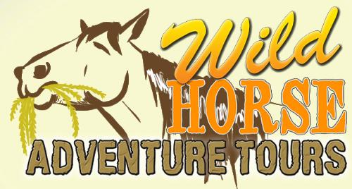 wild horse tours